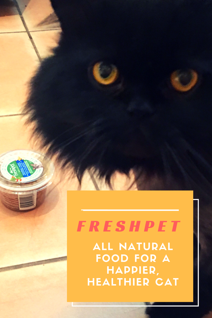 Freshpet Pet Food: Fresh, All Natural Food For A Happier, Healthier Cat