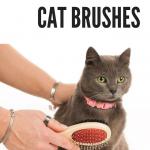 The 4 Best Cat Brushes