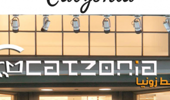 Catzonia: World's First Five Star Cat Hotel – For Your Special Pet