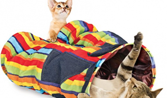 4 Unusual Cat Accessories You Didn't Know You Needed