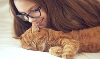 Cat Owners Are Less Likely To Die Of Stroke, Or Other Heart Related Diseases!