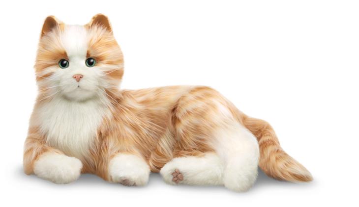 Therapeutic Sensory Animatronic Cats Bring Joy To Elderly Patients