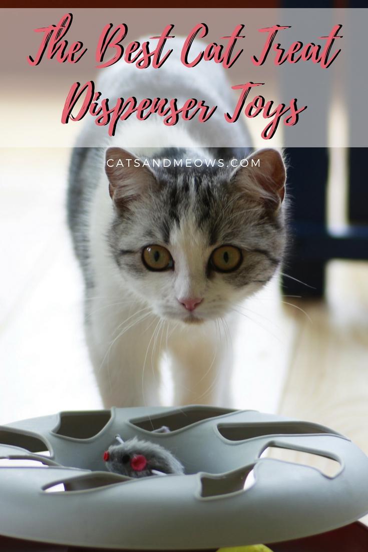 The Best Cat Treat Dispenser Toys